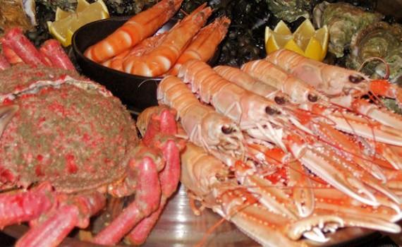 photo fruits de mer